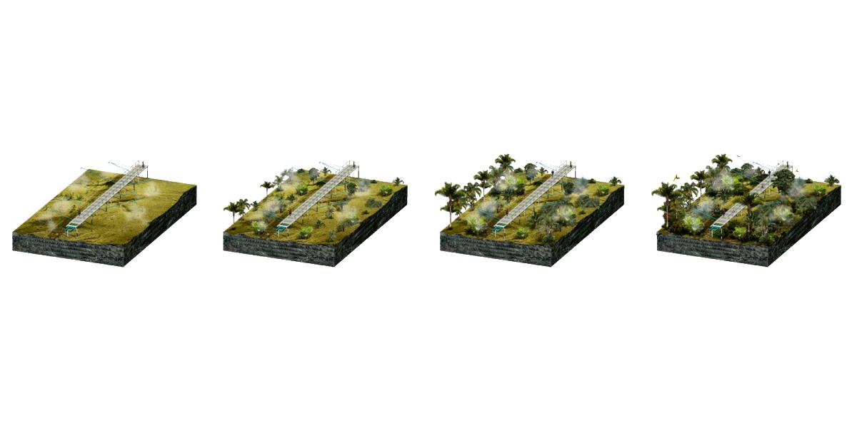 1205-PAC-4-SCHEMAS