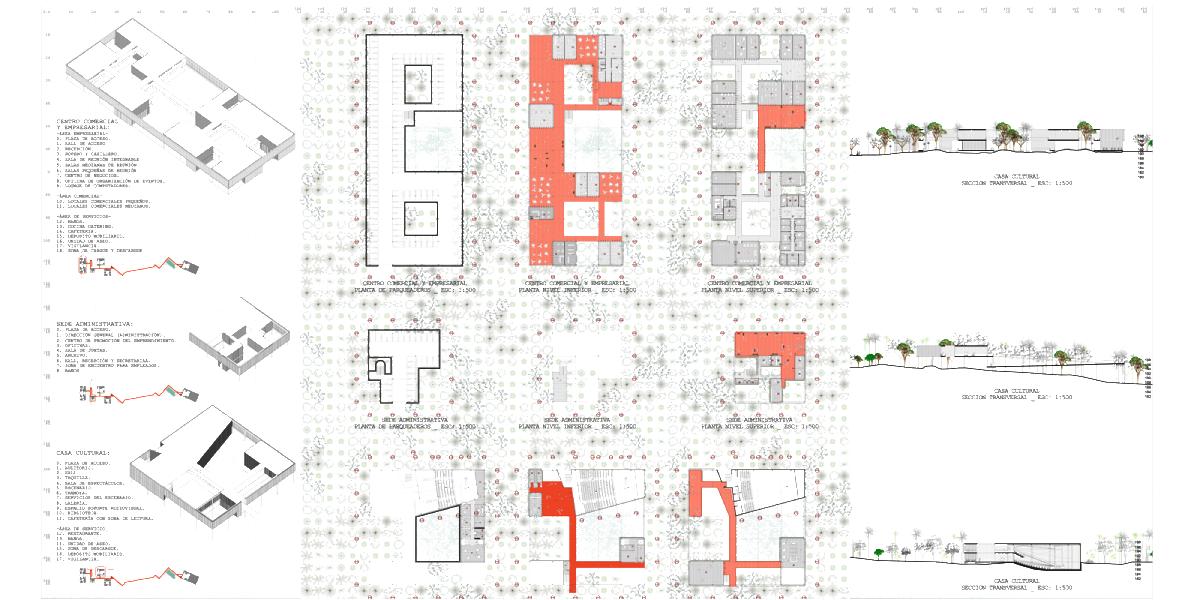 1205-PAC-PLANTAS