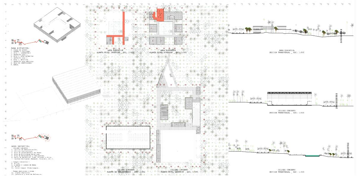 1205-PAC-PLANTAS2