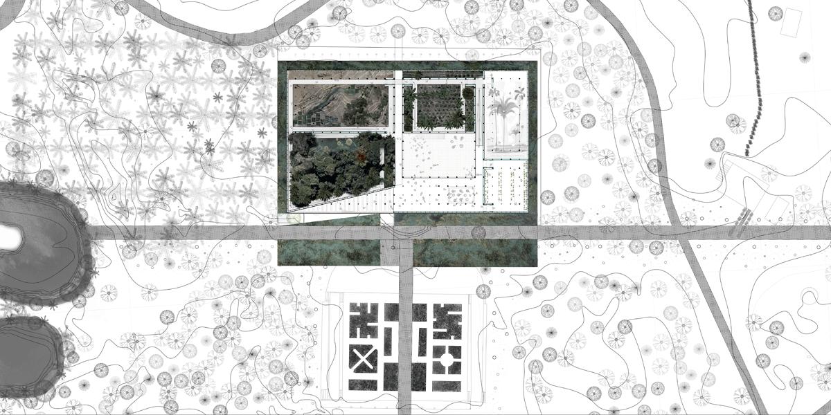 05B_TROP_PLANTA-5